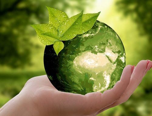 Duurzaam wonen: 7 tips