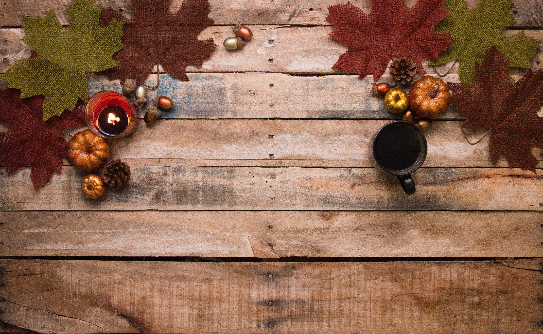 Haal de herfst in huis wolfs traprenovatie